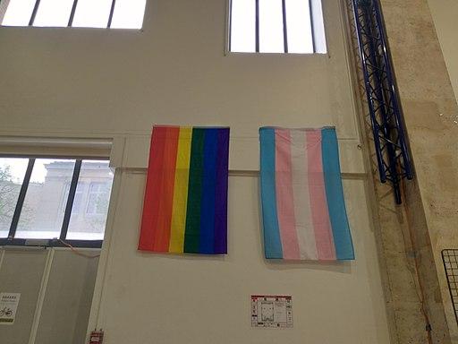 Printemps des assoces 2019 drapeaux LGBT et Trans'