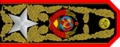 Project of the Generalissimo of the USSR's rank insignia - Variant 5.png