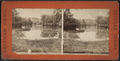 Prospect Park, N.Y, from Robert N. Dennis collection of stereoscopic views.png