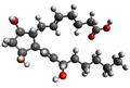 Prostaglandin F2alpha 3d.png