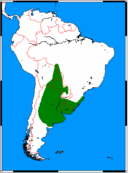 Pseudalopex gymnocercus range map