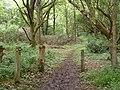 Public footpath, Backside Common (geograph 5632548).jpg