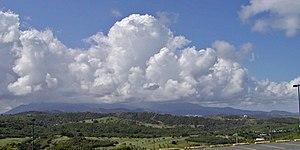 El Yunque National Forest - Image: Puerto Rico El Yunque 1