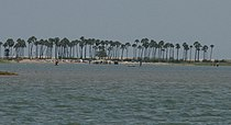 Pulicat-Fishing camp.jpg