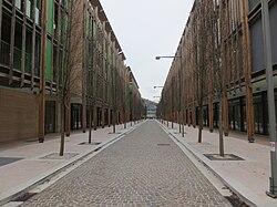 Quartiere Le Albere.jpg