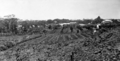Queensland State Archives 123 Buderim January 1931.png