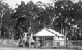 Queensland State Archives 4321 Tobacco growing at Beerburrum farmhouse 1933.png