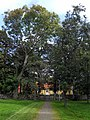 RAÄ Varberg 52 1, Landeriet Freden, 2011-09-19, 1.jpg