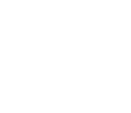 RPC Anomaly Logo - White.png