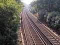 Railway tracks east of Woodfidley, New Forest - geograph.org.uk - 260871.jpg