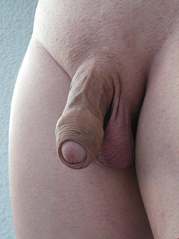 analdehnung rasierter penis