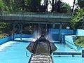 RastilandWildwasser.jpg