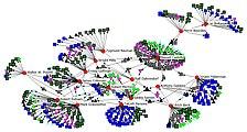 Redes-sociales-sociólogos-contemporáneos.jpg