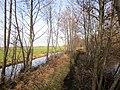 Reeuwijkse Plassen, Kippenkade, Reeuwijk, Netherlands - panoramio (1).jpg