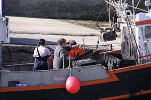 Retour de la pêche à la seiche du fileyeur Jason IV (35).JPG