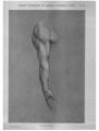 Richer - Anatomie artistique, 2 p. 95.png