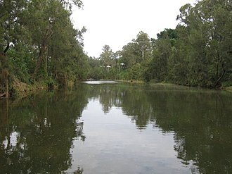 Richmond River - The Richmond River at Casino, 2006.