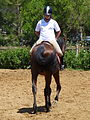 Riding a Horse Backwards 1110826.jpg