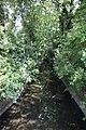 River Brent - geograph.org.uk - 898939.jpg
