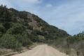 Roadway, Santa Catalina Island, a rocky island off the coast of California LCCN2013634940.tif