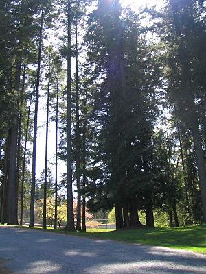 Robert Burnaby Park - Image: Robert Burnaby Park