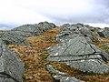 Rock ridges, Beinn Ghlas. - geograph.org.uk - 151061.jpg