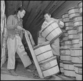 Rohwer Relocation Center, McGehee, Arkansas. Gathering a supply of food stuffs, in the produce coo . . . - NARA - 539372.tif