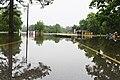 Roman Forest Flood Waters - 4-19-16 (26497269646).jpg