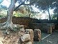 Ruines Romaines Tipaza 5.jpg