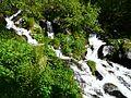 Ruisseau de Coume Nère Cazeaux amont (3).JPG