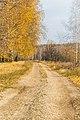Ryazansky District, Ryazan Oblast, Russia - panoramio (100).jpg