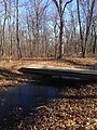 Salamander Pond bridge Tyson.JPG