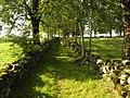 Salers , pays de pierre et de grands espaces, situé entre Dordogne et Puy-Mary - panoramio (24).jpg