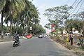 Salt Lake Bypass - Jheel Meel - Kolkata 2012-01-19 8405.JPG