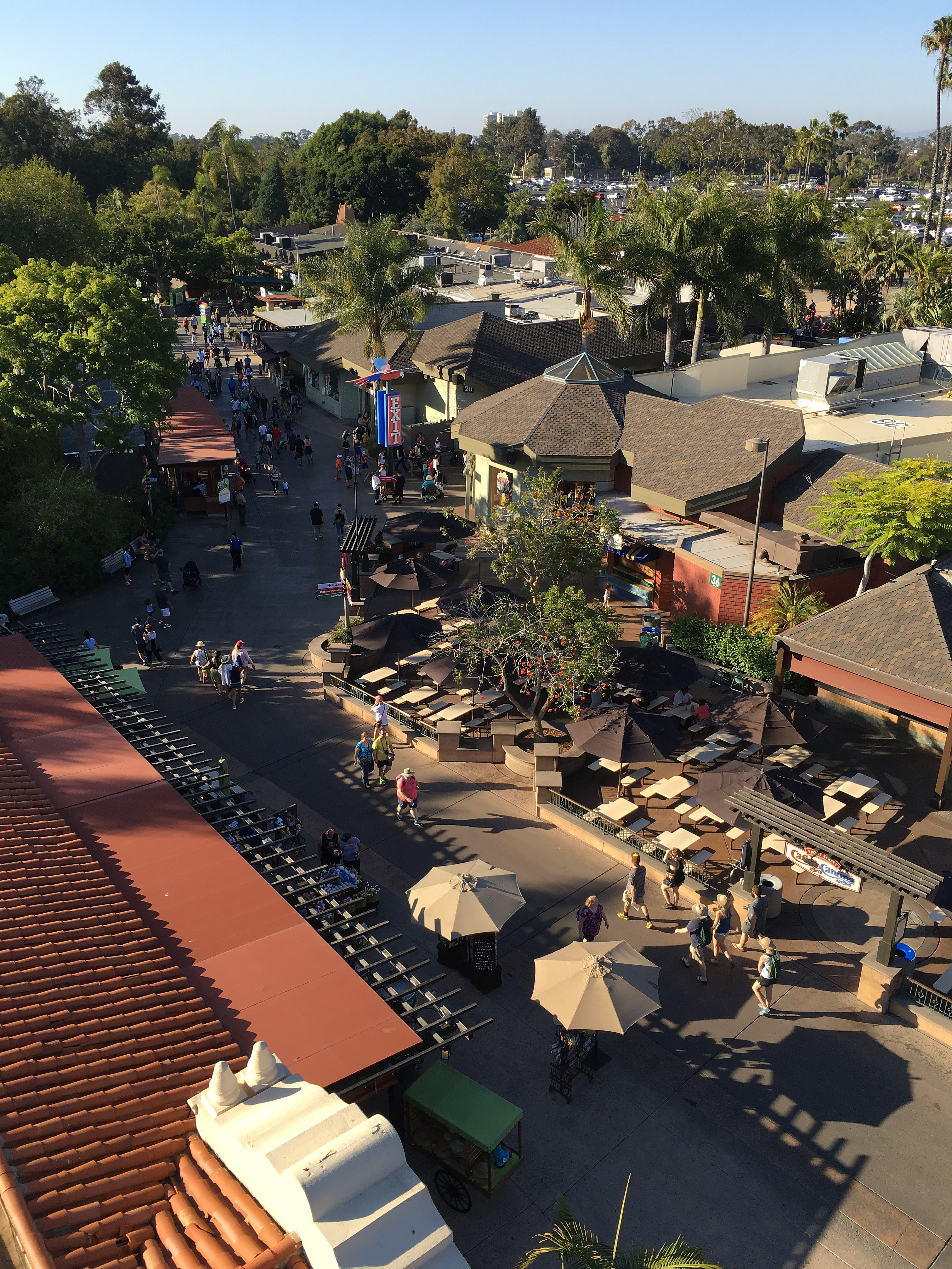 File:San Diego Zoo View From Skyfari 7 2016-06-05 jpg