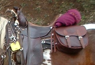 Saddlebag - Saddlebags on a Western saddle