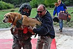 Saving animals 130916-A-RI441-734.jpg