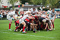 Scrum - US Oyonnax - Rugby club toulonnais, 28th September 2013 (2).jpg
