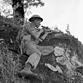 Seaforth Highlanders of Canada sniper Foiano Italy October 1943.jpg