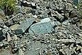 Serpentinite (East Dover Ultramafic Body, Ordovician; Copperhead Road quarry, near East Dover, Vermont, USA) 5.jpg