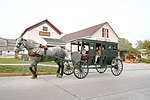 Amish buggy offering tourist rides in Shipshewana, Indiana.