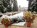 Shiraz - panoramio (18).jpg