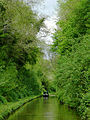 Shropshire Union Canal at Woodseaves Cutting - geograph.org.uk - 1590538.jpg