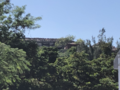 Shuri Castle charred roof 20191102.png
