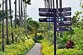 Singapore - panoramio (190).jpg