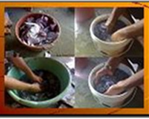 Aniruddha's Academy of Disaster Management -  Small Scale Vermiculture