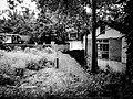 Snapshot, Jungli, Taoyuan, Taiwan, 馬祖新村, 中壢馬祖新村, 隨拍, 中壢, 桃園, 台灣 (15102319275).jpg