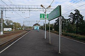 Snegiri railstation.jpg
