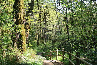 Cascadia State Park - River Trail at Cascadia State Park.