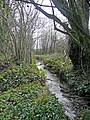 Somerset stream - geograph.org.uk - 746833.jpg